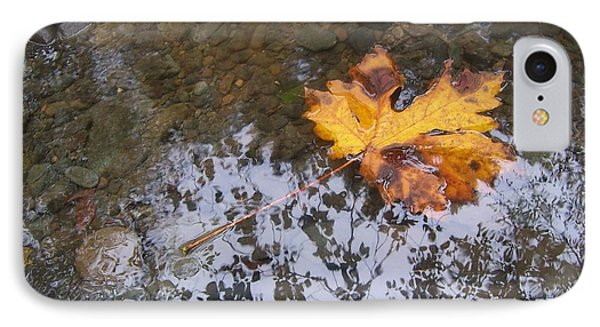 IPhone Case featuring the photograph Maple Leaf Reflection 3 by Peter Mooyman