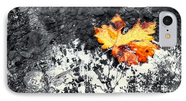 Maple Leaf Selective Color IPhone Case by Peter Mooyman