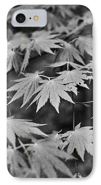 Maple Leaves In Seoul IPhone Case by Julie VanDore