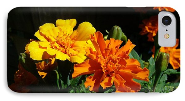 IPhone Case featuring the photograph Marigold Morning Glory by Jim Sauchyn