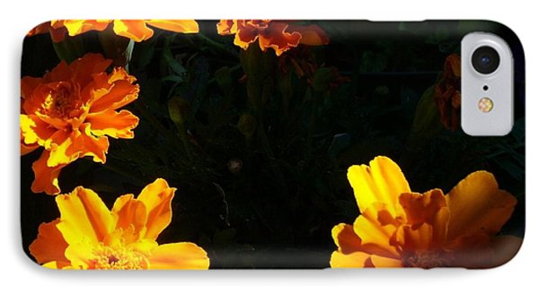IPhone Case featuring the photograph Marigold Sunrise by Jim Sauchyn