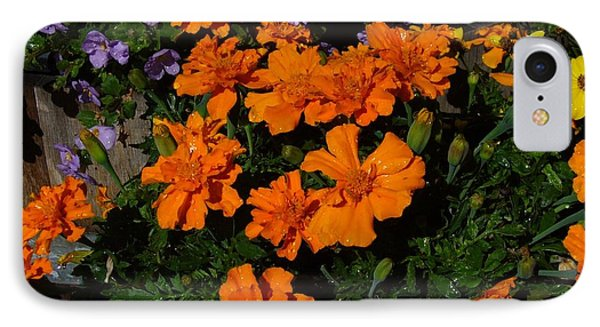 IPhone Case featuring the photograph Marigolds by Jim Sauchyn