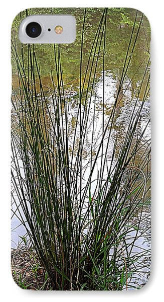 IPhone Case featuring the photograph Marsh Grass by Renee Trenholm