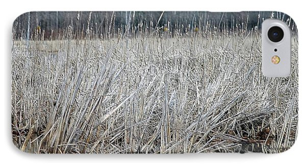 Marsh Land IPhone Case by Kathleen Struckle