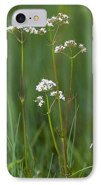 Marsh Valerian (valeriana Dioica) Phone Case by Bob Gibbons