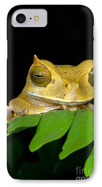 Marsupial Frog Phone Case by Dante Fenolio