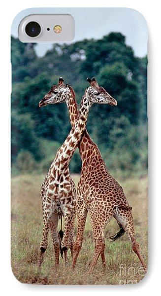 Masai Giraffes Necking Phone Case by Greg Dimijian