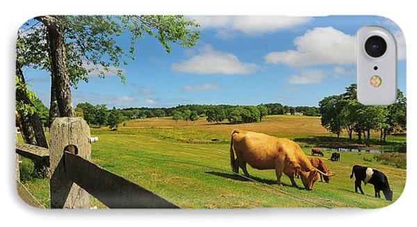 Massachusetts Farm Phone Case by Catherine Reusch Daley
