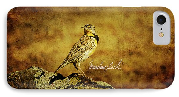 Meadowlark IPhone 7 Case by Lana Trussell