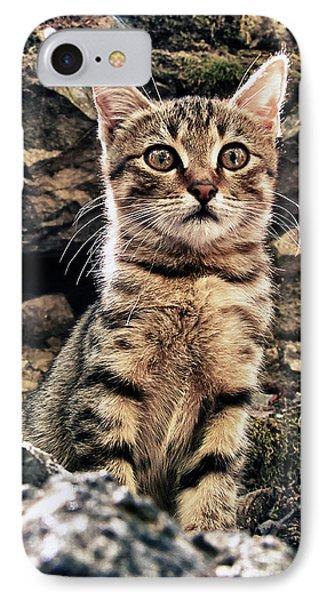 Mediterranean Wild Babe Cat Phone Case by Stelios Kleanthous