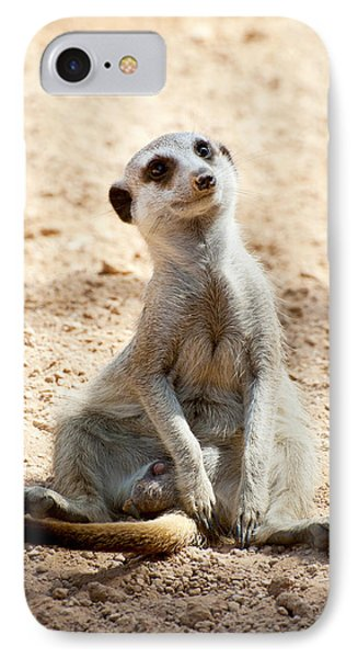 Meerkat iPhone 7 Case - Meerkat by Fabrizio Troiani