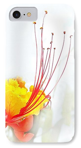 Mexican Bird Of Paradise Phone Case by Kume Bryant