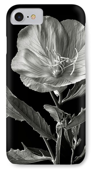 IPhone Case featuring the photograph Mexican Evening Primrose In Black And White by Endre Balogh