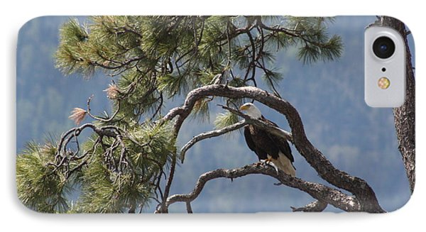 IPhone Case featuring the photograph Mighty Eagle by Cathie Douglas