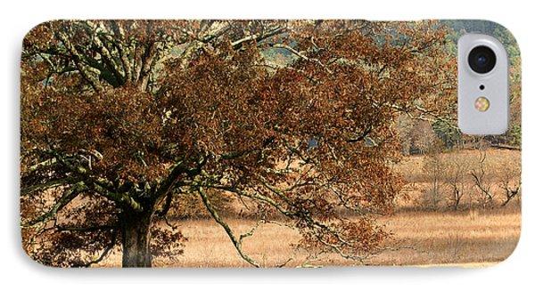 Mighty Oak IPhone Case by TnBackroadsPhotos