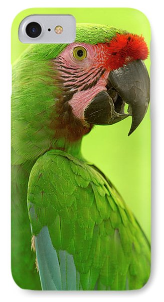 Military Macaw Ara Militaris Portrait Phone Case by Pete Oxford