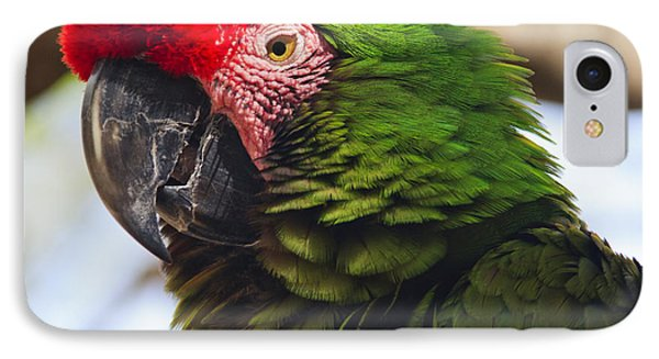 Military Macaw Parrot IPhone Case