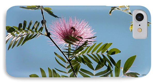 Mimosa Flower  Phone Case by Theresa Willingham