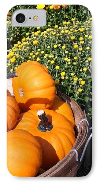 Mini Pumpkins Phone Case by Kimberly Perry