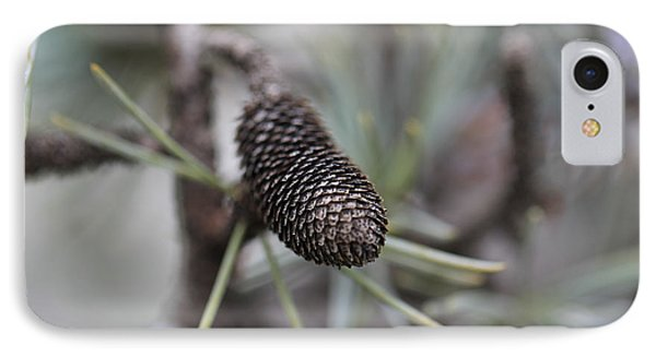 Miniature Pine Cone  Phone Case by Douglas Barnard