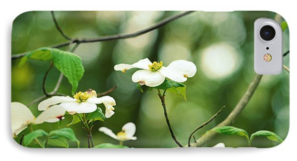 Miracle Of The Dogwood IPhone Case by Robin Dickinson