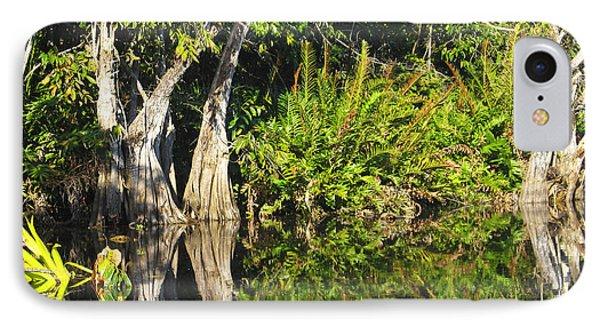 Mirror Pond IPhone Case by Anne Mott