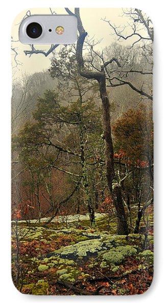 Misty Tree Phone Case by Marty Koch