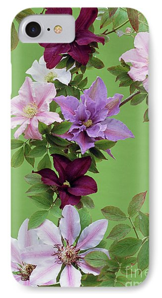 Mixed Clematis Flowers Phone Case by Archie Young
