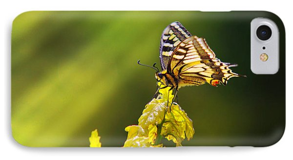 Monarch Butterfly Phone Case by Carlos Caetano
