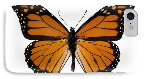 Monarch Butterfly Phone Case by Dr Keith Wheeler
