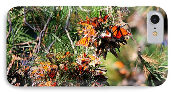 Monarch Butterfly Gathering Phone Case by Tap On Photo