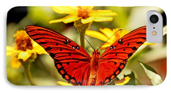 IPhone Case featuring the photograph Monarch Butterfly  by Luana K Perez