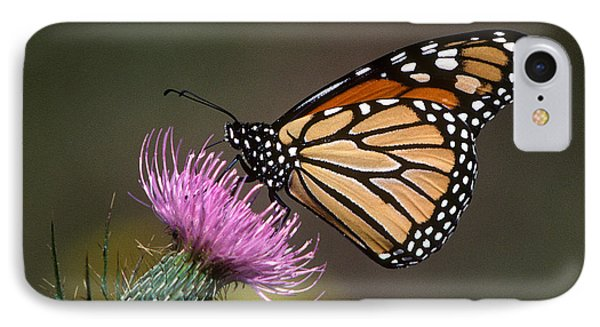 IPhone Case featuring the photograph Monarch Butterfly On Thistle 13a by Gerry Gantt