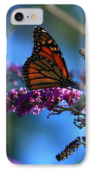 IPhone Case featuring the photograph Monarch Butterfly by Patrick Witz