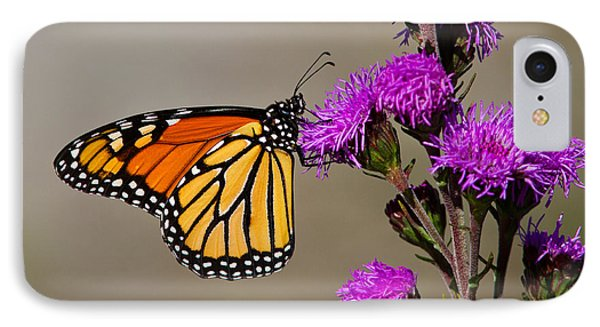 Monarch Phone Case by Mircea Costina Photography
