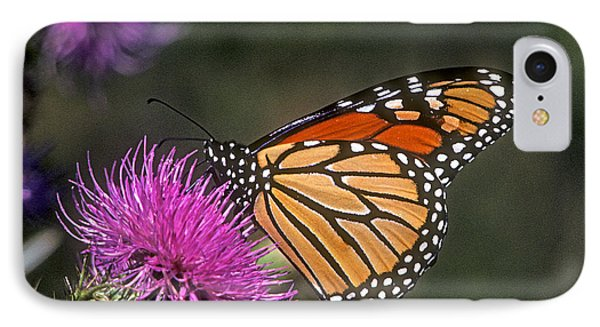 IPhone Case featuring the photograph Monarch On Thistle 13f by Gerry Gantt