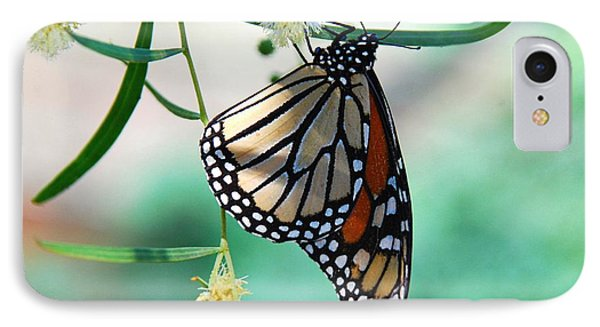 IPhone Case featuring the photograph Monarch by Tam Ryan