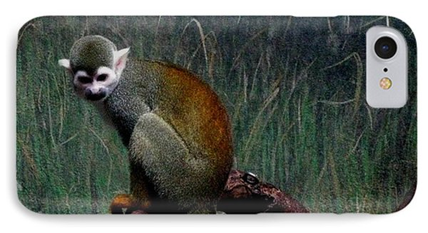 IPhone Case featuring the photograph Monkey by Maria Urso