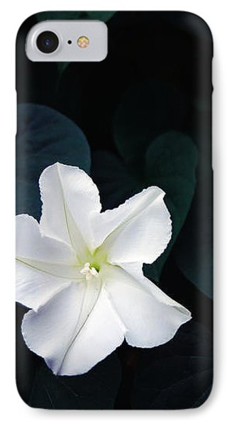 Moonflower IPhone Case by Amy Williams