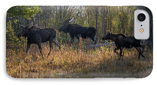 Moose Family IPhone Case by Ronald Lutz