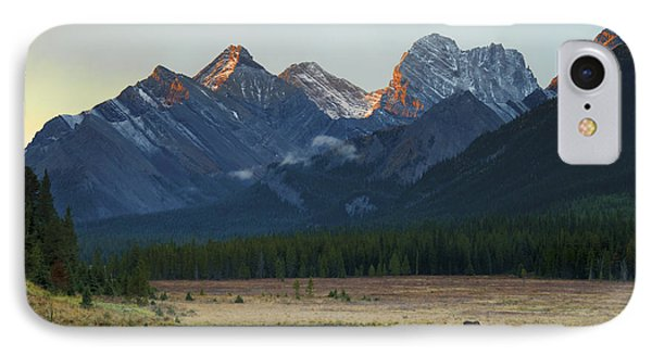 Moose Grazing At Sunset With Mountains Phone Case by Philippe Widling