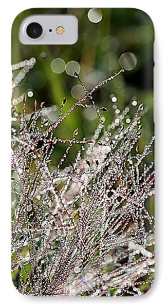 IPhone Case featuring the photograph Morning Dew by Lauren Radke