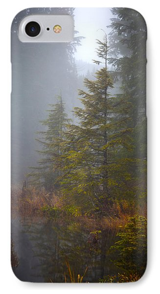 Morning Fall Colors Phone Case by Mike Reid