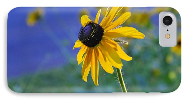 IPhone Case featuring the photograph Morning Light by Nava Thompson