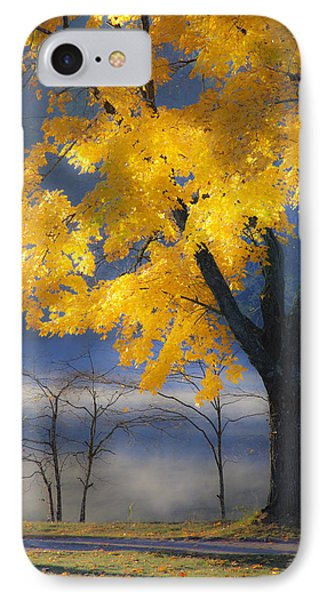 Morning Maple Phone Case by Rob Travis