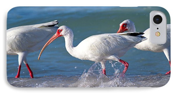 Ibis iPhone 7 Case - Morning Stroll by Betsy Knapp