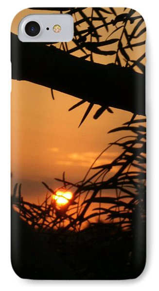 IPhone Case featuring the photograph Morning Sun And Mesquite by Louis Nugent