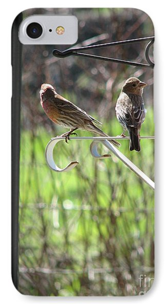 Morning Visitors IPhone Case by Rory Sagner