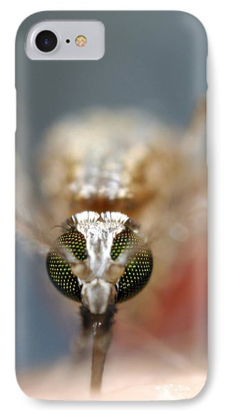 Mosquito Feeding IPhone Case by Sinclair Stammers