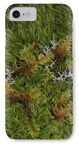 IPhone Case featuring the photograph Moss And Lichen by Daniel Reed